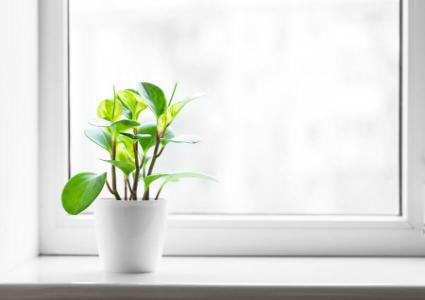 G nstige fenster aus kunststoff kaufen for Kunststofffenster konfigurator