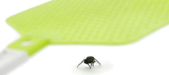 Insektenschutz Fliegenklatsche