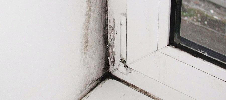 schimmel am fenster oder fensterrahmen einfach entfernen. Black Bedroom Furniture Sets. Home Design Ideas