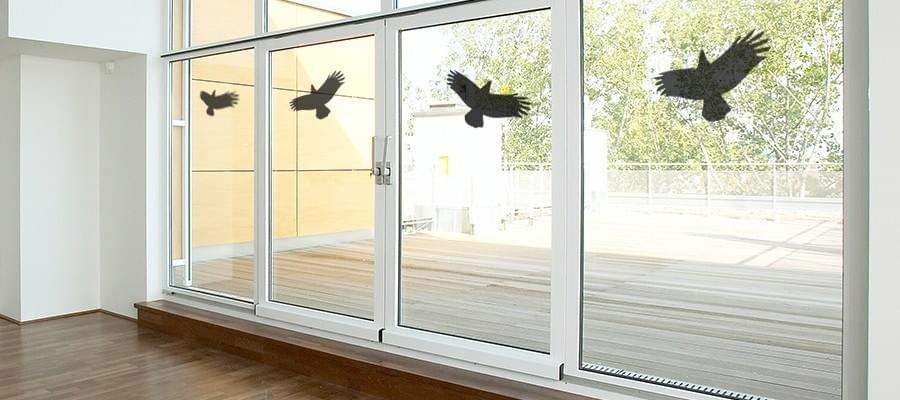 vogel fliegt gegen fenster was kann man dagegen tun. Black Bedroom Furniture Sets. Home Design Ideas