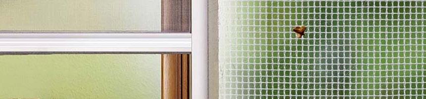 insektenschutzrollo fliegengitter als rollo nach ma kaufen. Black Bedroom Furniture Sets. Home Design Ideas